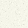 4805 Carrara