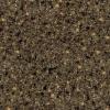 G63 Allspice Quartz