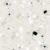 G71 Dalmatian
